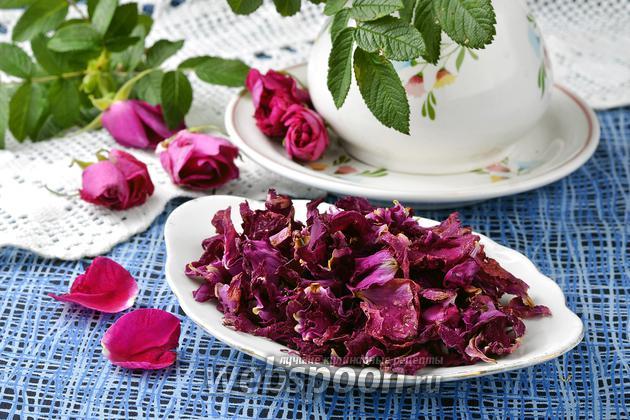 Фото Как сушить чайную розу