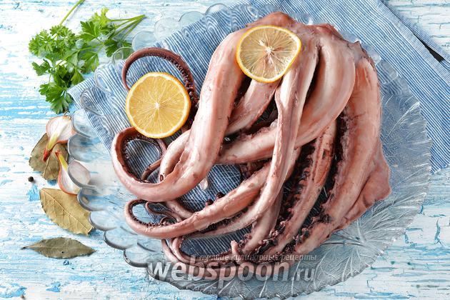 Фото Как варить осьминога
