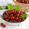 Фото совета Как удалить косточки у вишни