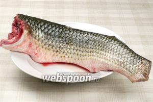 Для приготовления блюда, рыбу надо помыть, удалить голову, внутренности, чешую и плавники. Долго и тщательно мыть под прохладной водой.