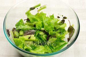 Базилик помыть, просушить, отделить листья от стеблей и добавить к салату. Смешать зелень с огурцами и добавить 1 ст. л. растительного масла.