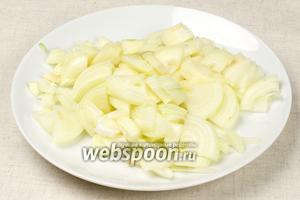 2 крупные луковицы очистить и порезать полукольцами.