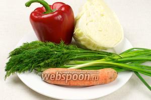 Для салата нам нужны такие продукты: капуста и морковь должны быть сочными, перец можно взять жёлтый или зелёный — это только украсит салат.