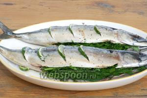 Зелень хорошо помыть и обсушить, а затем плотно набить внутрь рыбы. Оставить скумбрию мариноваться на 20-30 минут.