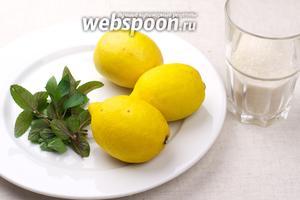 Чтобы сделать домашний лимонад из лимонов, берём 3 лимона, небольшой пучок мяты и полстакана сахара — это количество продуктов на объём воды 3 литра.