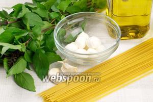 Для приготовления спагетти понадобится базилик, чеснок, сыр моцарелла, сыр пармезан, оливковое масло.
