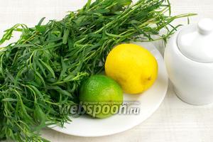 Для приготовления этого напитка понадобится большой пучок тархуна, лимон, лайм и сахар.