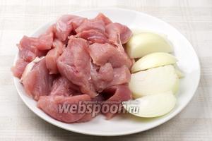 Филе хорошо помыть и порезать на средние куски, репчатый лук очистить и порезать на 6-8 частей.
