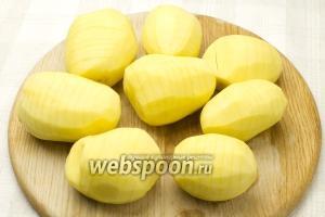 Очистите картофель от кожуры и сделайте на каждой картофелине глубокие поперечные надрезы, в 2 мм толщиной каждый.