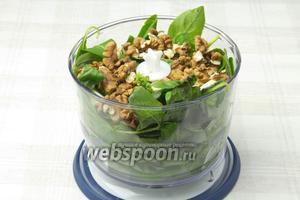 Смешайте щавель, базилик, чеснок и орехи. Измельчите в блендере, постепенно вливая оливковое масло.
