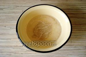 Начинаем готовить опару: посуду, в которой будет подниматься опара сполоснуть горячей водой. В тёплой воде развести 1 десертную ложку сухих дрожжей.