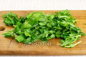 Зелень хорошо промыть, обсушить и крупно порезать.