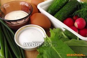 Для приготовления холодника возьмём свежий щавель, яйца, огурцы, редис, зелень и сметану.