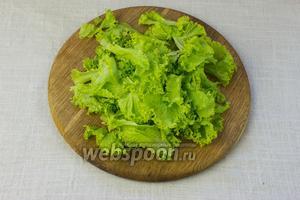Листья салата вымыть, обсушить бумажными салфетками и порвать руками на средние куски.
