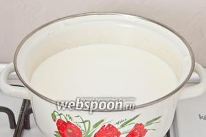 Молоко влить в кастрюлю. Довести до 90 °С на слабом огне. Добавить соль и сахар.   Молоко ни в коем случае не кипятить!