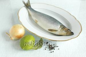 Подготовить основные продукты: сельдь солёную, лайм, лук и специи.