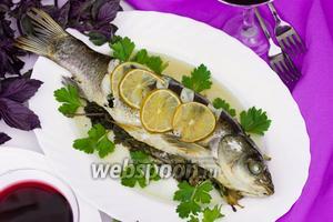 Рыба запечённая в пергаменте с ароматными свежими травами и лаймом
