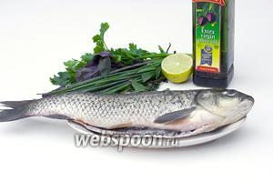 Рыбу почистите от чешуи, выпотрошите, хорошо помойте и просушите бумажным полотенцем.