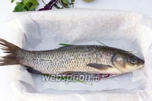 Форму для запекания выстелите пергаментом для выпечки, уложите на дно зелёный лук, на него положите подготовленную рыбку.