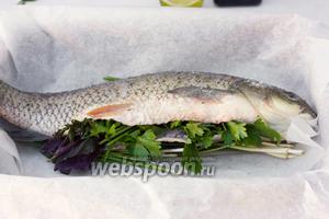 Хорошо посолите рыбу снаружи и внутри, в брюшко вложите травы- базилик, мяту, петрушку.