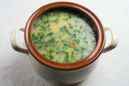 Добавить в готовый суп зелень и перец. Кипятить 3 минуты. Готовый суп подавать горячим с сухариками из белого хлеба.