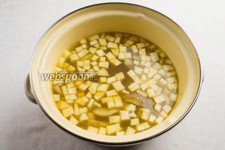Добавить в овощной бульон сельдерей и грибы. Посолить, поперчить. Варить 30 минут на медленном огне.