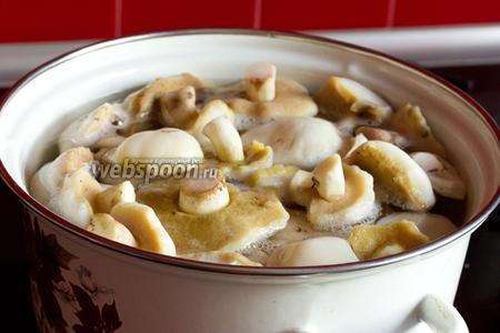 В кастрюле кипятим воду, подсаливаем немного, бросаем в неё грибы и варим 30 минут. Затем воду сливаем, заливаем грибы новым кипятком и варим ещё 30 минут.