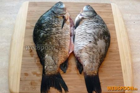 Рыбу очистить от чешуи, удалить жабры и полностью выпотрошить (включая пузырь и икру — их место займёт лук).