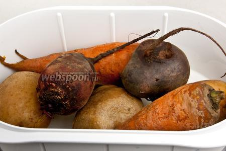 Сварить овощи до готовности и дать остыть.