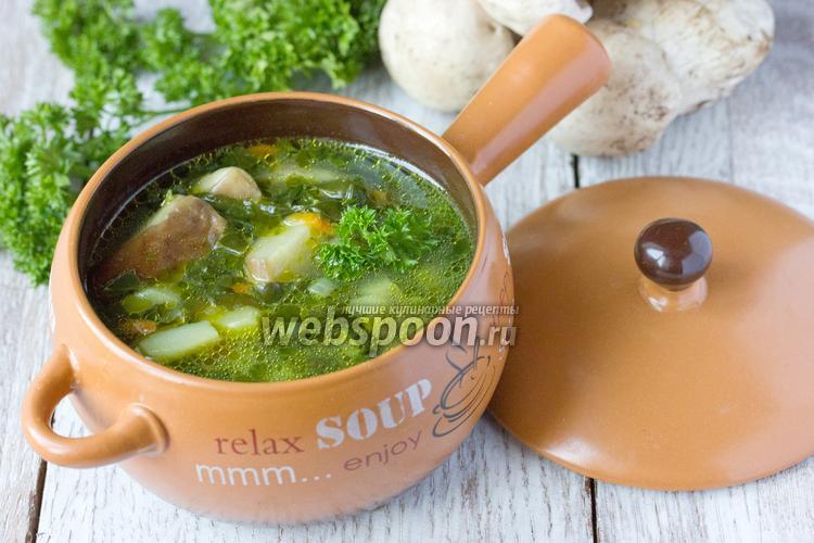 Фото Суп с белыми грибами и шпинатом