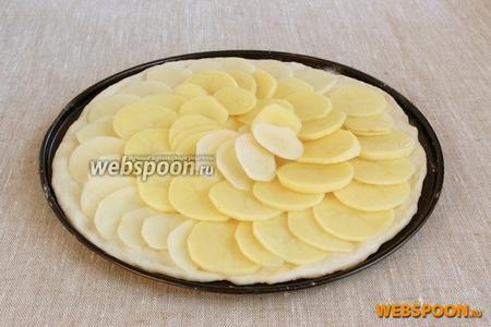 Картофель нарезать тонкими пластиками, выложить поверх теста внахлёст.