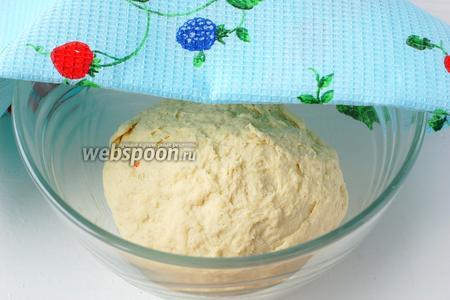Накрыть тесто полотенцем и поставить в тёплое место на 1 час. За это время 2 раза обмять тесто.