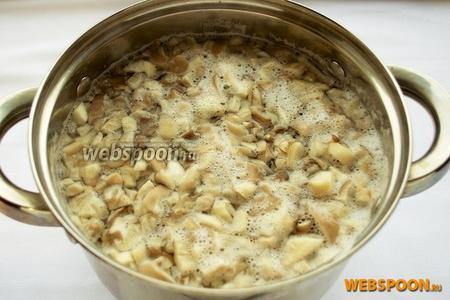 Кипящую воду посолите и отправьте туда грибы. Плавленые сырки уберите на время в морозильную камеру.