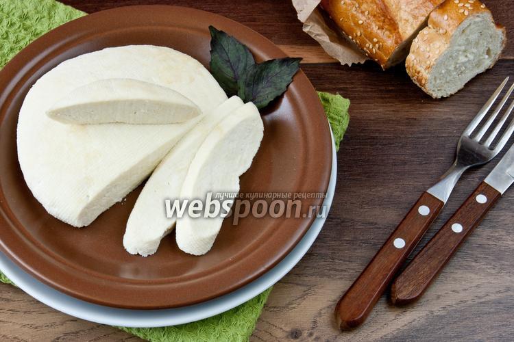 Фото Панир или домашний сыр