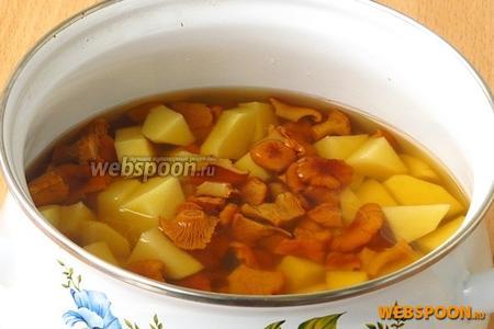 Картофель выложить к отвару лисичек и проварить до мягкости.
