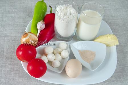 Чтобы приготовить булочки, необходимо взять для теста: муку, молоко, соль, сахар, дрожжи, желток 1 яйца, сливочное масло; для начинки красный и зелёный сладкие перцы, помидоры, лук, чеснок, сыр моцарелла, зелень.