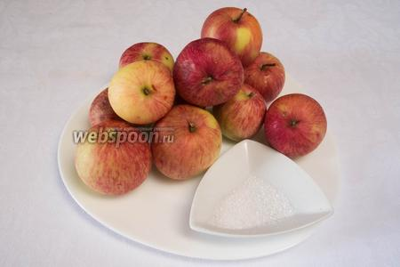 Чтобы засушить яблоки, нам потребуется лимонная кислота, пароварка или дуршлаг для обработки яблок паром, специальный нож для чистки сердцевины.