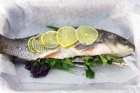 Лайм нарезаем тонкими дольками, выкладываем сверху на рыбу.
