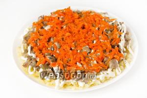 Отваренную морковь (оставшуюся её часть после вырезания «цветов») натираем на крупной тёрке и выкладываем поверх грибного слоя.