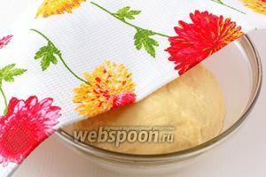 Положить тесто в посуду, смазанную растительным маслом. Накрыть полотенцем и поставить в тёплое место на 1,5 часа.
