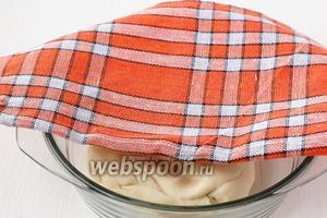 Накрыть тесто полотенцем и оставить на 30 минут.