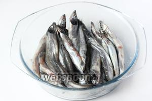 Перемешиваем рыбу мойву, чтобы соль равномерно распределилась.