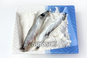 Подготовьте тарелку или любую посуду по размеру мойвы и насыпьте 50-70 грамм муки. Теперь обваливаем каждую рыбку в пшеничной муке со всех сторон.