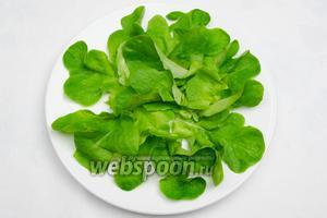 Собираем салат. На дно тарелки выкладываем листья салата.