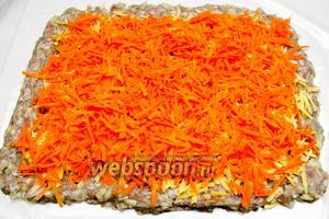 Поверх сыра разложить тёртую морковь.