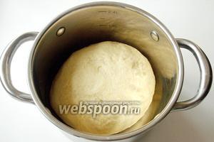 Кладём тесто в ёмкость, накрываем полотенцем и ставим в тёплое место для увеличения его в объёме в 2 раза.