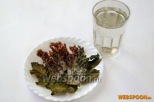 Приготовим для чая фильтрованную воду, веточки зверобоя и мяты, листья смородины и вишни.