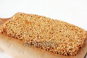 Выложить на пергаментную бумагу, смазанную растительным маслом толщиной примерно 1 см.
