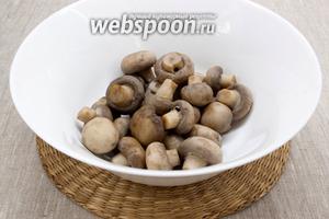 Шампиньоны промыть. Лавровый лист, перец и гвоздику поместить в кастрюлю с водой, как закипит, то подсолить немного и положить грибы. Варить около 15-20 минут после закипания. Вынуть грибы, остудить.