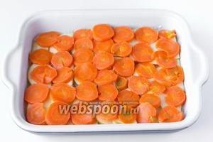 Отваренную морковь чистим, нарезаем тонкими кольцами и выкладываем на яблочный слой.